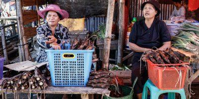 Il coronavirus e il commercio di animali selvatici in Asia