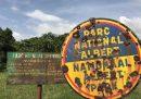 Sedici persone sono morte in un attacco all'interno del parco nazionale dei Virunga nella Repubblica Democratica del Congo