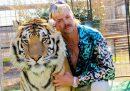 """Domenica uscirà un nuovo episodio speciale del documentario di Netflix """"Tiger King"""""""
