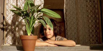 5 modi per innaffiare le piante mentre si è in vacanza