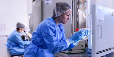 Blackstone Group ha acquisito la società di test sul DNA Ancestry.com