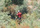 Sono stati trovati dei resti umani che potrebbero essere di Gioele Mondello