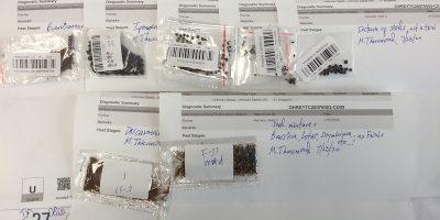 Sappiamo qualcosa in più sulla truffa dei semi per posta