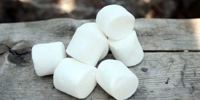 I marshmallow vengono da una pianta