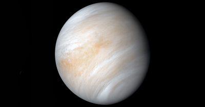 C'è vita su Venere? Forse