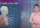 La nube di polvere gialla sulle due Coree