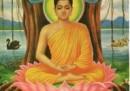 Il Budda della parrocchietta